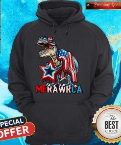 Funny Merica T-Rex Dinosaur 4TH Of July American Flag Hoodie