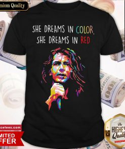 Nice Eddie Vedder She Dreams In Color She Dreams In Red Shirt- Design By Romancetees.com
